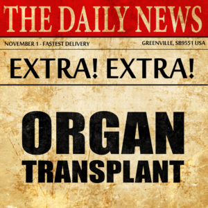 organ transplant, newspaper article text